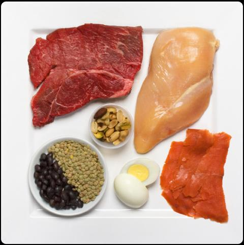 Why Do Bodybuilders Eat Foods High In Protein